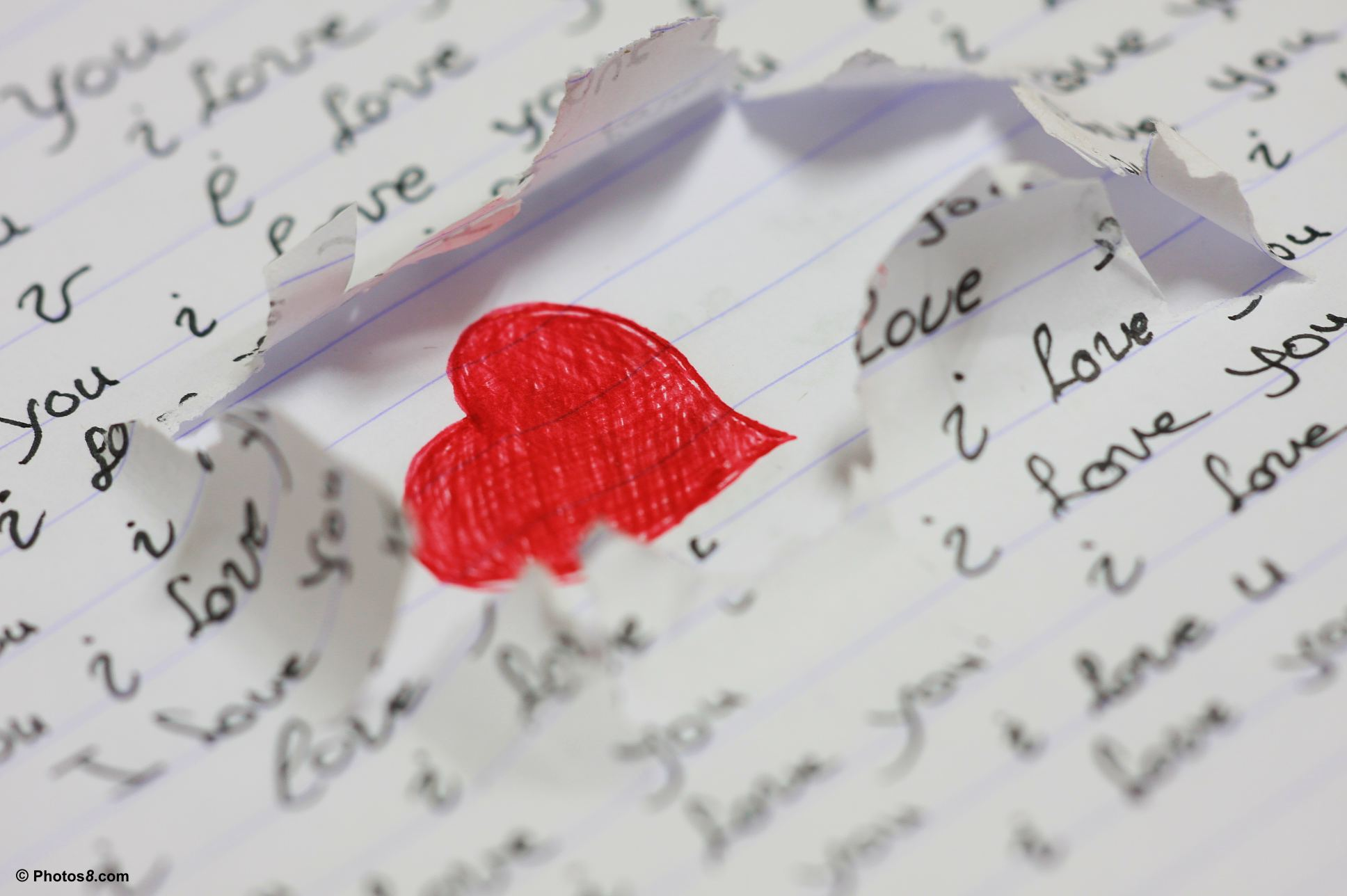 the other lover essay Sample essay words 1,320 another type of love that leads to harm is the love of animals it is better than the love of things because an animal understands your passions as a human being and has the capability of returning love too.